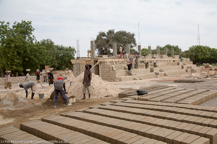 Workers making concrete blocks